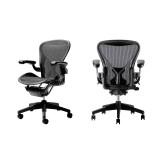 Argosy Herman Miller Aeron PostureFit Chair C